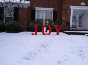 Chuck's new Christmas decoration enjoying the fresh snow!